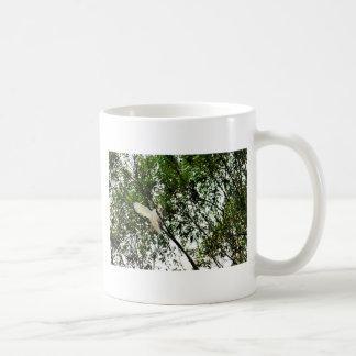 TAZA DE CAFÉ COCKATOO BLANCO QUEENSLAND AUSTRALIA
