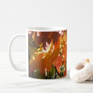 Taza De Café Color de la caída de la ceniza blanca (Fraxinus