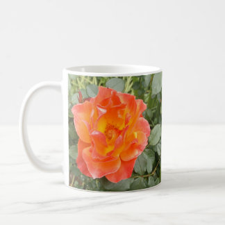 Taza De Café Color de rosa
