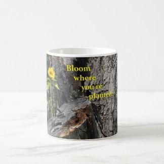 taza de café con el crecimiento de flor fuera de