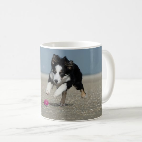 Taza De Café Concentras Border collie hunting a