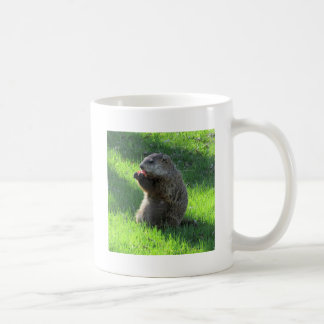 Taza De Café Consumición de Groundhog