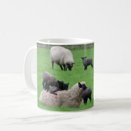 Taza De Café Cordero y ovejas de la primavera