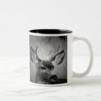 Taza de café del Dos-Tono con las fotos de ciervos