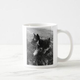 Taza de café del Schnauzer