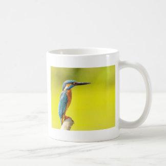 Taza De Café día birdy de los valantines del abucheo del pájaro
