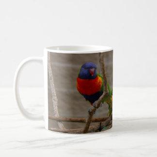 Taza De Café Dos pájaros del parque zoológico. Amor uno otro,