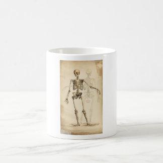 Taza De Café Ejemplo del vintage del esqueleto humano