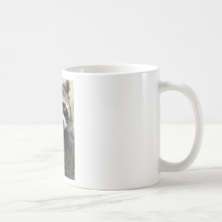 Taza De Café El mapache amistoso