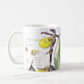 Taza De Café El Wildflower de la orquídea de señora deslizador