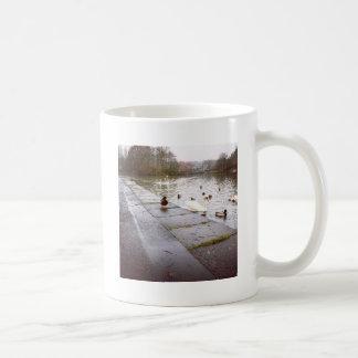 Taza De Café En el lago