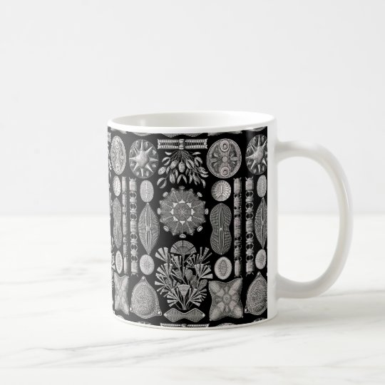 Taza De Café Ernst Haeckel Diatomea