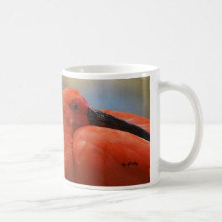 Taza De Café Escarlata Ibis