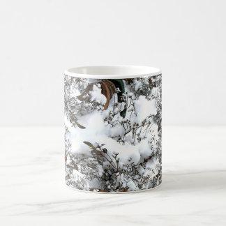 Taza De Café Extracto de la nieve