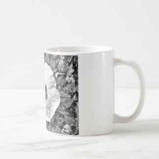 Taza De Café Flor blanco y negro con las gotas de agua en ella