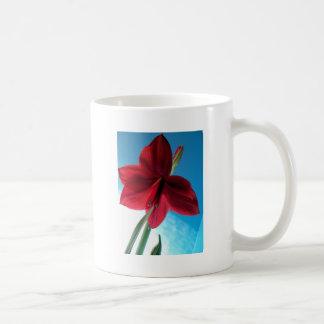 Taza De Café flor roja viva del Amaryllis 108a