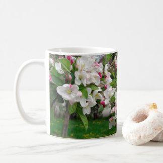 Taza De Café Floración del manzano de la primavera de Europa