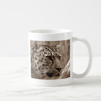 Taza De Café Foto de la sepia HD del primer del leopardo