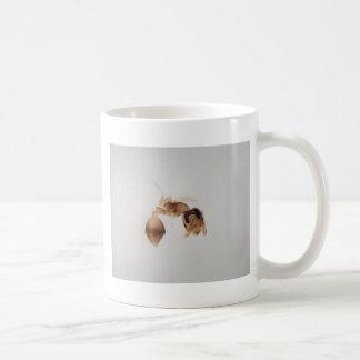 Taza De Café Foto del microscopio de una hormiga