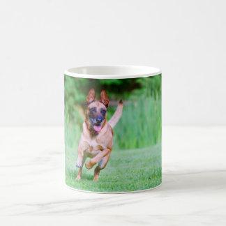 Taza De Café Funcionamiento del perro de Malinois