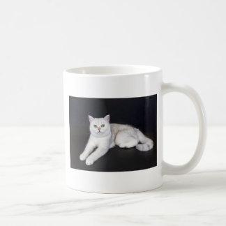 Taza De Café Gato blanco que miente en fondo negro aislado