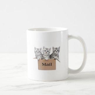 Taza De Café Gatos jovenes en caja de cartón con el correo de