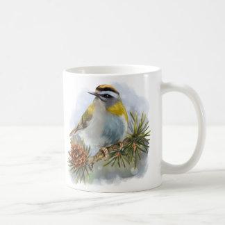 Taza De Café Goldcrest que se sienta en una rama spruce