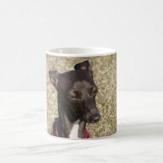 Taza De Café greyhound.png italiano