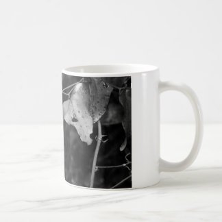 Taza De Café hoja del negro y del blanco
