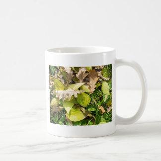 Taza De Café Hojas de otoño caidas en césped de la hierba verde