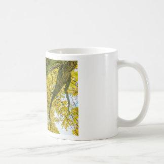 Taza De Café Hojas y ramas del árbol de debajo en caída
