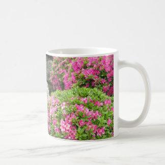 Taza De Café Jardín de piedra de Japón con las flores rosadas
