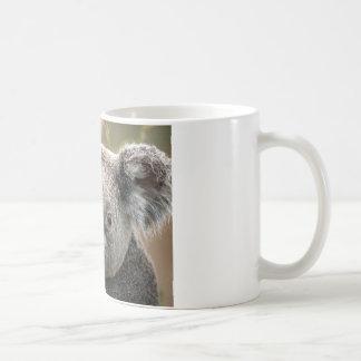 Taza De Café Koala