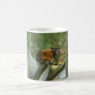 Taza De Café la abeja