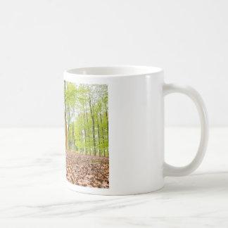 Taza De Café La mujer se sienta con el espejo en bosque durante