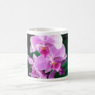 Taza De Café La orquídea florece primer en rosa
