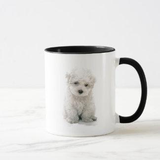 Taza de café linda de Bichon Frise