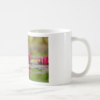 Taza De Café Lirios de agua