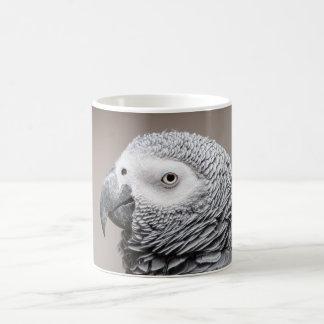Taza De Café Loro del gris del gris africano de Congo de la