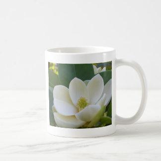 Taza De Café Magnolias meridionales de CricketDiane