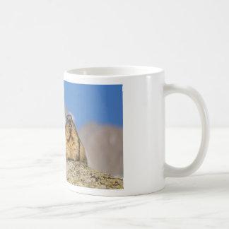 Taza De Café Marmotas alpinas