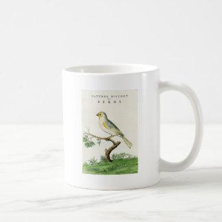 Taza De Café Natural History of Birds