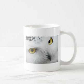 Taza De Café Ojos del búho de la nieve