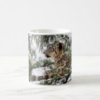 Taza De Café Onza debajo de Nevado Bush