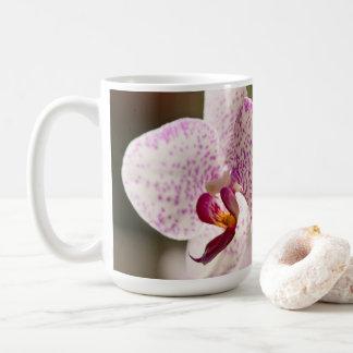 Taza De Café Orquídeas de Shirley Taylor