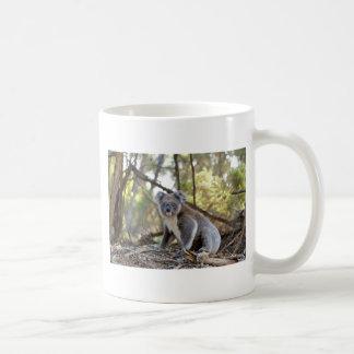 Taza De Café Oso de koala gris y blanco