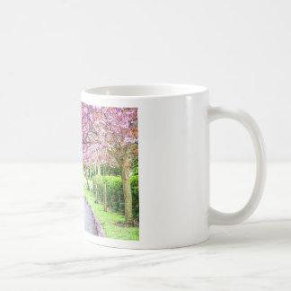 Taza De Café Parque hermoso durante la primavera