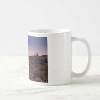 Taza De Café Parque nacional de la yuca de la puesta del sol