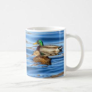 Taza De Café Patos en el agua azul
