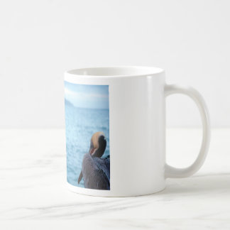 Taza De Café pelícano pacífico